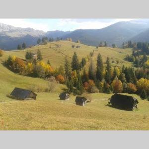 peisaj-agro-pastoral-montanb
